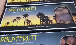 jual kurma palm fruit